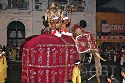 Esala Perahera Festival in Sri Lanka